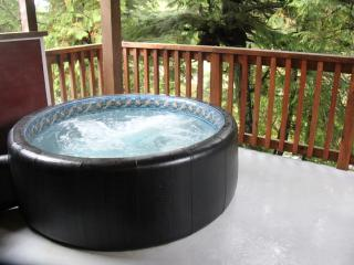 West Wind Cabin on Spring Cove ( Hot Tub ) - Ucluelet vacation rentals