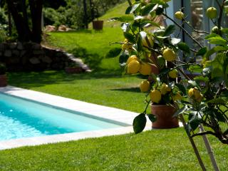 Orangerie, stunning villa with pool near Florence - Bagno a Ripoli vacation rentals