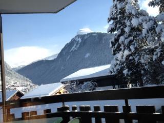 Nice Studio with Internet Access and Balcony - Morzine-Avoriaz vacation rentals