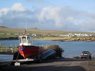 Beautiful, Spacious Home On Own Site, With Magnifi - Dingle vacation rentals
