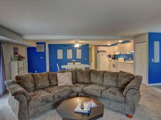 Cozy 2 bedroom Mineral Condo with Deck - Mineral vacation rentals