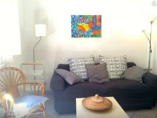Sole Apartment Via del Parioncino 4 - Florence vacation rentals