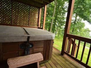 Majestic 4 Bedroom Mountain Home with extraordinary lake views! - McHenry vacation rentals
