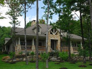 Gorgeous Mountain Vista with inviting outdoor area in prestigious community! - McHenry vacation rentals