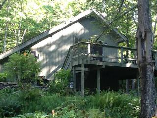 Midcentury Modern in the Woods - Shandaken vacation rentals