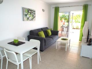 NEW:  Beautiful Apartment with 2 Terraces and Pool - Playa San Juan vacation rentals