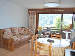 CARIBOU Studio + sleeping corner 4 persons - 1 - Le Grand-Bornand vacation rentals