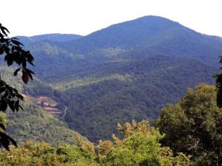 A Smoky View Cabin - Maggie Valley vacation rentals
