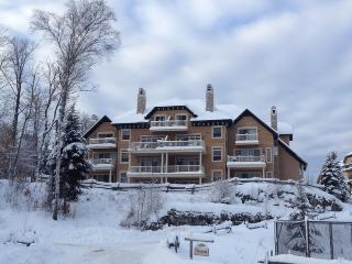 Tremblant Condo in 4 Star Resort - Mont Tremblant vacation rentals