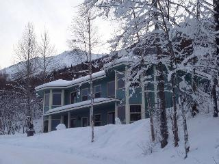 Nice Private room with Deck and Internet Access - Eagle River vacation rentals