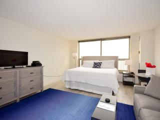 Presidential Towers Studio - Chicago vacation rentals