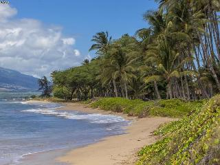 'Right on the Beach' on Maui. - Kihei vacation rentals