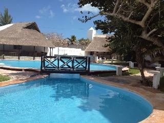 Beautiful Apartment with Blender and Garden in Chicxulub - Chicxulub vacation rentals