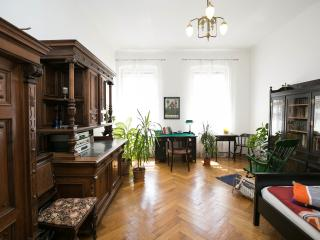 Art Nouveau Apartment near city center - Vienna vacation rentals