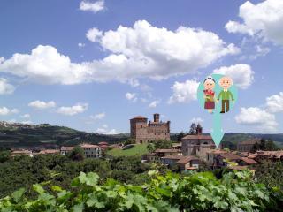 Vicino ad Alba e Barolo, nelle Langhe - Grinzane Cavour vacation rentals