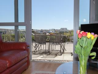 11 Zinc located in Newquay, Cornwall - Newquay vacation rentals