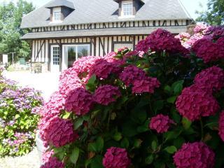 LA GRANGE AUX HORTENSIAS près HONFLEUR/ LE HAVRE - Manneville-la-Raoult vacation rentals