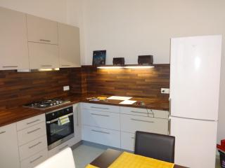 Spacious 2 bedroom apartment with garden - Prague vacation rentals
