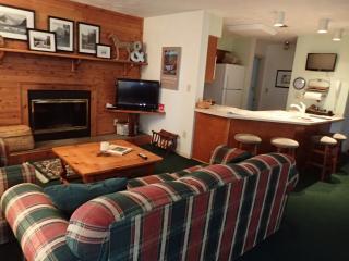 2 bedroom Apartment with Short Breaks Allowed in Hidden Valley - Hidden Valley vacation rentals