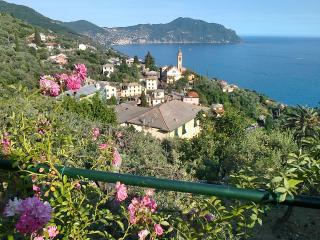 Sosta o vacanza vistamare in villa con charme - Pieve Ligure vacation rentals