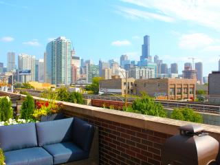 4 LEVELS 3 BEDROOMS 2 FULL BATHS = 1 AWESOME HOUSE - Chicago vacation rentals