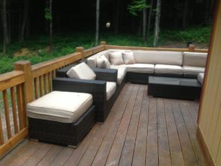 Completely Remodeled Four Bedroom Two Bath - Equinunk vacation rentals