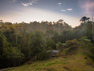 135ha Private Rainforest - Retreat Into Nature - Puerto Viejo de Talamanca vacation rentals