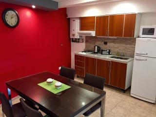 Latorre Apartment full equipado El Calafate - El Calafate vacation rentals