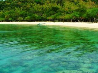 Perfect Family Room in the Tropics! - Coron vacation rentals
