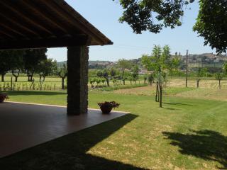 b&b la macine con ampio portico e grande giardino - Monte San Savino vacation rentals