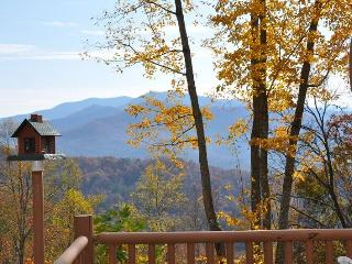 MooseHead Lodge - Mountainside Cabin with Enchanting View - Stone Fire Pit - 15 - Bryson City vacation rentals