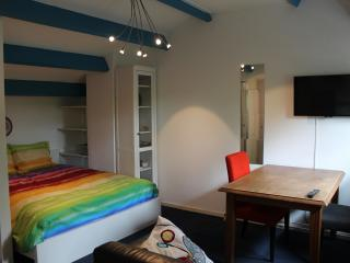 Nice Studio with Internet Access and Housekeeping Included - Wageningen vacation rentals