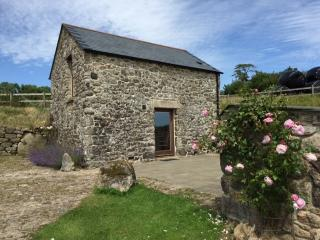 Yonder Shippon - Widecombe in the Moor vacation rentals