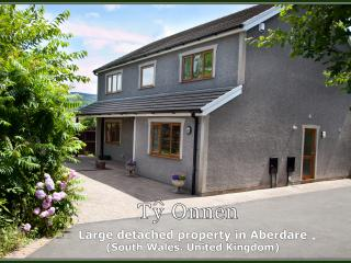 Detached Property close to Bike Park Wales - Aberdare vacation rentals