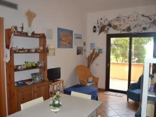 Romantic 1 bedroom Porto Pino Condo with A/C - Porto Pino vacation rentals