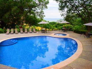 Luxury Condo with great views, very quite, lots of nature - Tarcoles vacation rentals