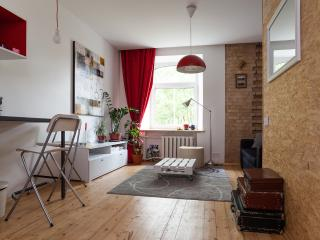 Stylish studio close to Old Town! - Vilnius vacation rentals
