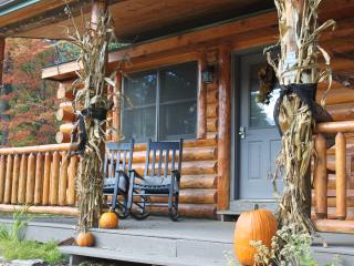 Log Cabin with Gas Stove - Pet friendly - New Lisbon vacation rentals