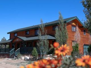 Big Bear Big Cabin - Big Bear City vacation rentals