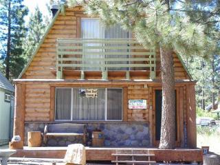 Bear Trap Cabin - Big Bear City vacation rentals