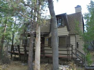 Lews Cub House - Sugarloaf vacation rentals