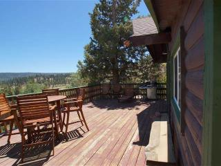 1 bedroom House with Deck in Fawnskin - Fawnskin vacation rentals