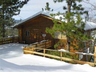 Unforgettable Views - City of Big Bear Lake vacation rentals