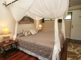 The Orchid Room at Hale Moi - Princeville vacation rentals