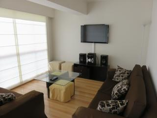 NEW! 4 Bedroom Apartment Miraflores, Lima, Peru - Lima vacation rentals