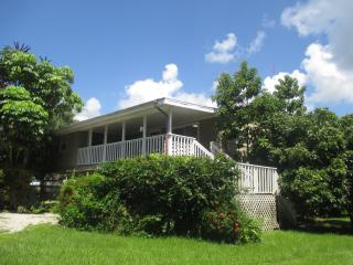 ISLAND BIRD - Bokeelia vacation rentals