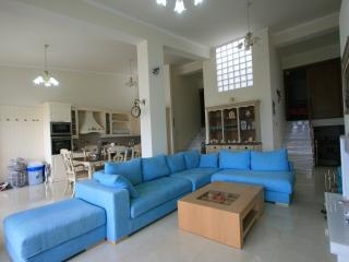 Luxury house in front of the sea - Xylokastro vacation rentals