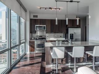 New Condo In The Heart Of Chicago - Chicago vacation rentals