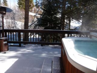 Fabulous Snow! Ski Special! and HOT TUB to enjoy - Frisco vacation rentals