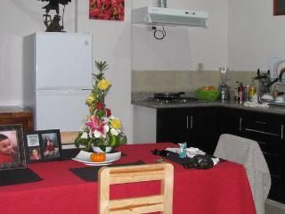 Studio in the center of Cuenca 0 - Cuenca vacation rentals